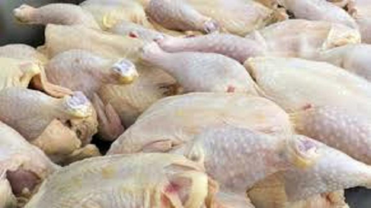 عرضه مرغ بالاتر از قیمت مصوب گرانفروشی است