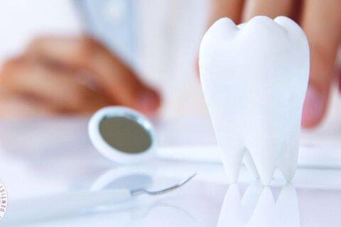 برترین دانشگاه های جهان در رشته دندانپزشکی خبرنگاران